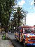 Het microbusje en de palmbomen