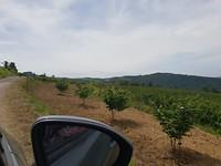 Onderweg in de omgeving van Serole