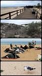 Monte Gordo, lekker langs het strand gewandeld