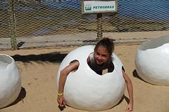 ons eigen schildpadje komt uit haar ei!!!