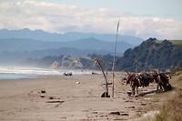 Ohone beach