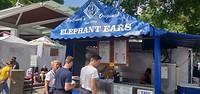 Elephant Ears?