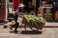 verse groente te koop