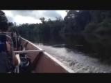 in de boot naar een plek voor een bush wandeling
