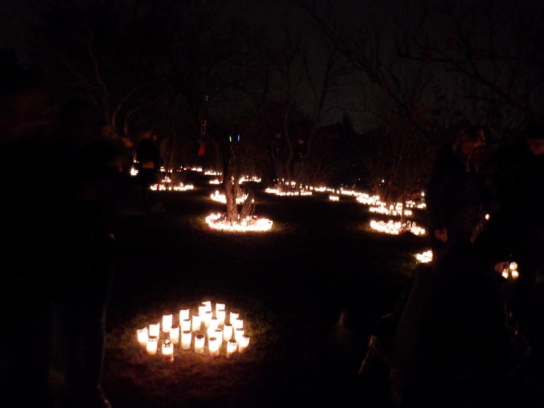Kaarsen op Skogskyrkogården