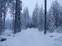 Winter in Unbyn