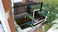 Gesloten systeem met vissen in de bak water