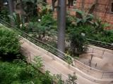 Butterfly garden in Museo Nacional