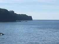 Baltische zee met krijtrotsen