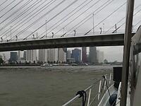 2021-09-10 1118 Onder de Zwaan in Rotterdam
