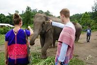 Elephant Rescue National Park, Chiang Mai