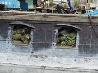 Stampvol met ananas
