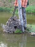 Aap gevangen op eilandje in de rivier