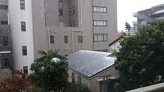 Sneeuw in Tokyo