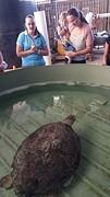 Reef Aquarium Townsvillle