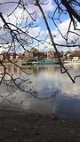 Cambridge Women Boatrace