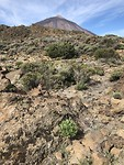 Nog meer uitzicht op de Teide