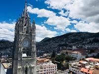 Ecuador - Quito basiliek
