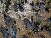 Wadlopen, zwerftocht bij Pieterburen, aardige modder bende en spekglad was het.