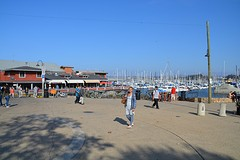 Monterey haven