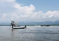 Famous visser