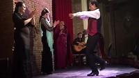 Flamenco 💃