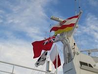300 De vlag van Tahiti