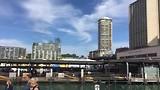Mooie beelden van de haven, de Harbour Bridge en Opera House