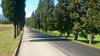 Onze eerste cypressenlaan na de Passo della Futa