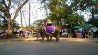 Olifantje rijden