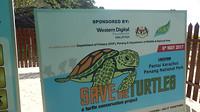 Red de schildpad
