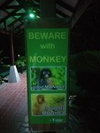 Beware of monkeys in our bungalow park