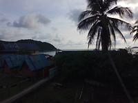 Ondergaande zon & palmboom
