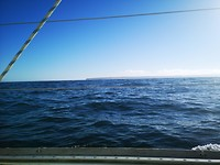 A lumpy sea