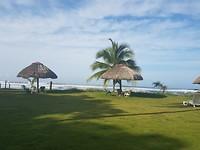 gras en strand