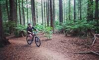Mountainbiken in Red Woods