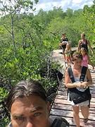 Mangrove onderweg