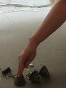 Slakken vrij laten