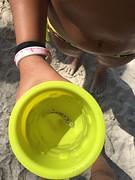 Juna vis gevangen 2