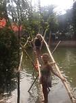 bamboe brug 2