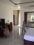 Palmy villa 2