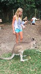 Joli kangoeroe