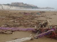 Aangespoeld afval bij de strand van Vieste