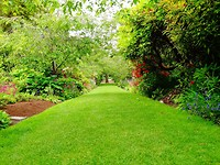 Dunedin botanische tuinen