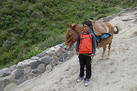 Young boy brings tourists up a steep path with a mule