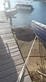 Uitzicht bij de buren aan het water
