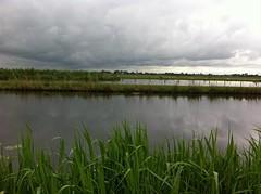 polder bij Woerden