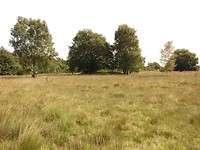 grafheuvel uit de bronstijd
