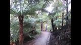 Abel Tasman track dag 1