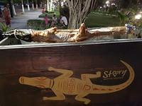 Krokodil aan het spit